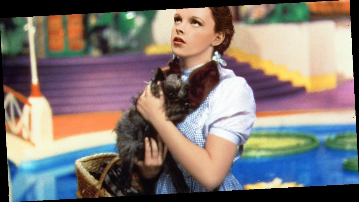 Judy Garland was penniless, virtually homeless and making $100 a night in bars