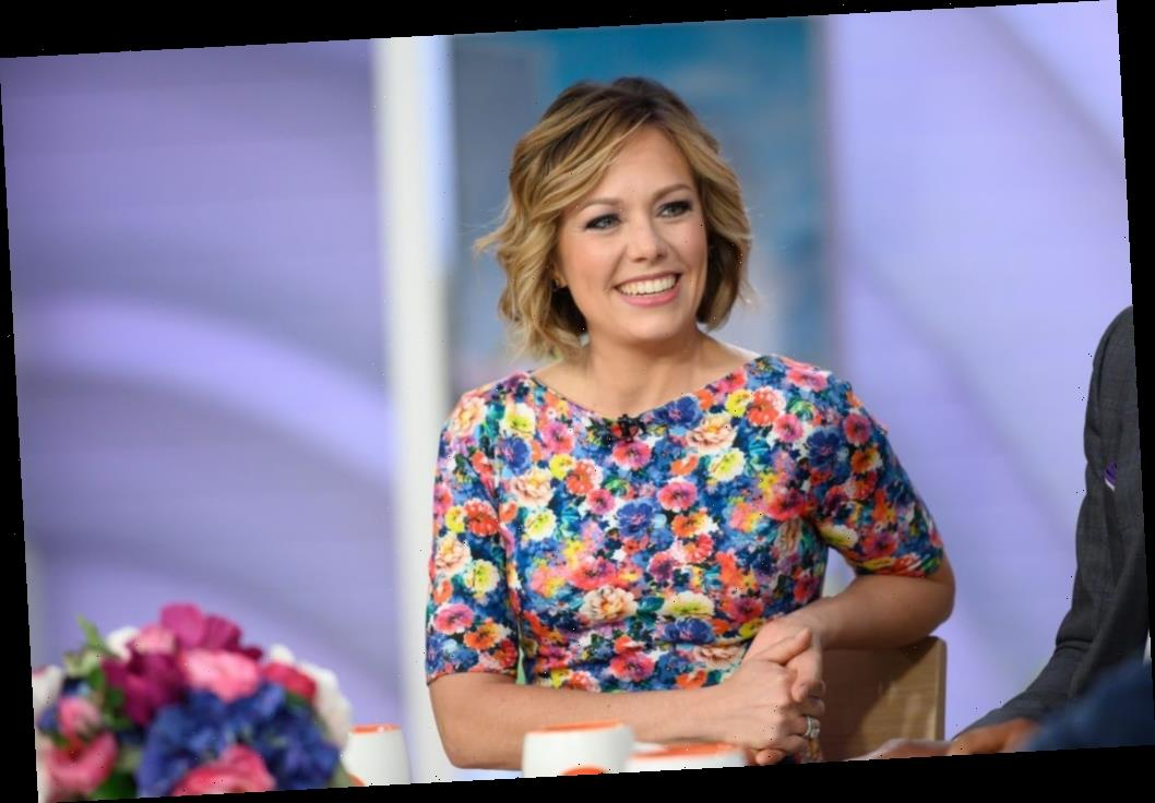 'Today Show's' Dylan Dreyer Posts a Pic of Herself on a Ladder While Pregnant and Fans React