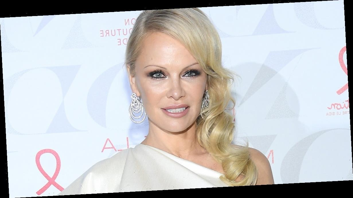Pamela Anderson Accused of Cultural Appropriation, Wore Native American Halloween Costume