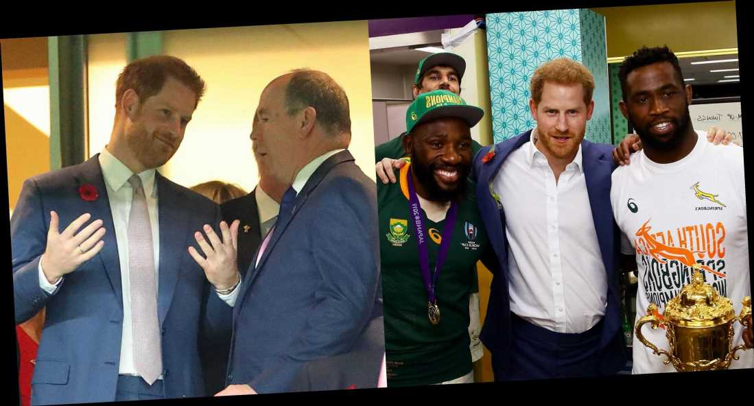 Prince Harry Joins Japan's Crown Prince Akishino and Prince Albert of Monaco at the Rugby