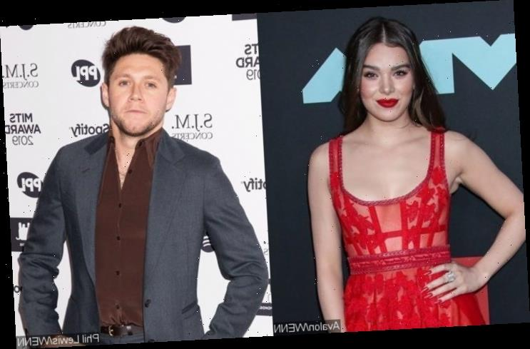 Hailee Steinfeld Announces Niall Horan Breakup Song 'Wrong Direction'
