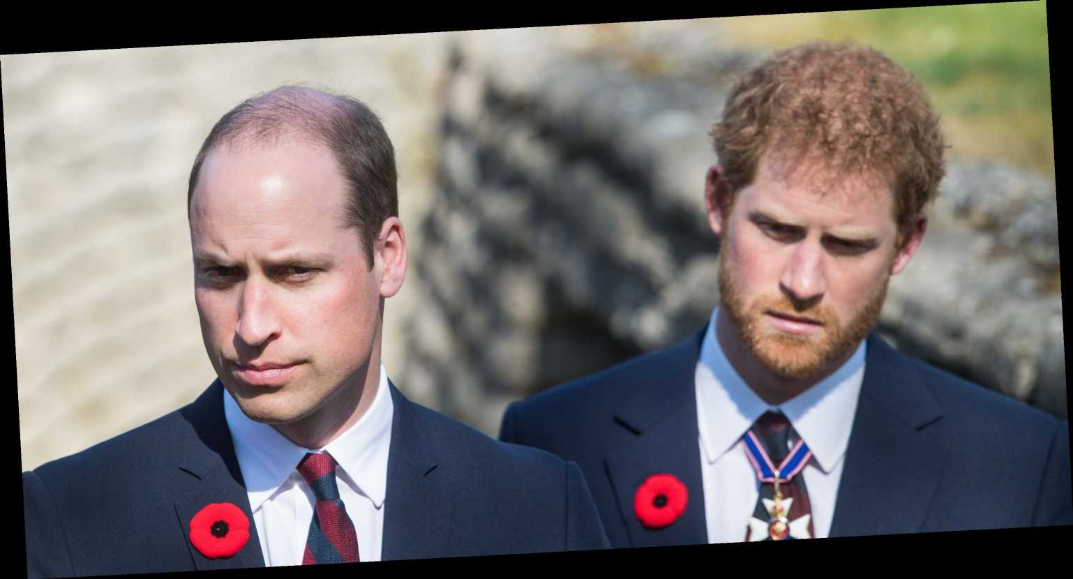 Please Enjoy Me Explaining Harry and William's Royal Rift to You in Truly Insane Detail