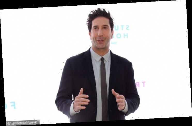 David Schwimmer Clarifies Black 'Friends' Comments: 'I Meant No Disrespect' to 'Living Single'
