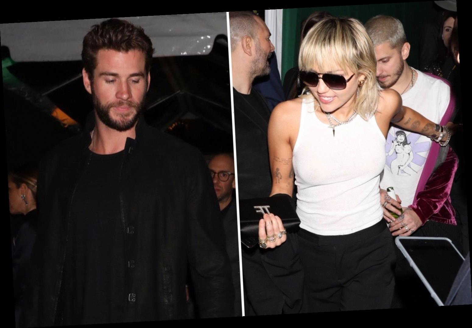 Exes Miley Cyrus and Liam Hemsworth avoid awkward run-in at WME Pre-Oscars party weeks after finalizing their divorce