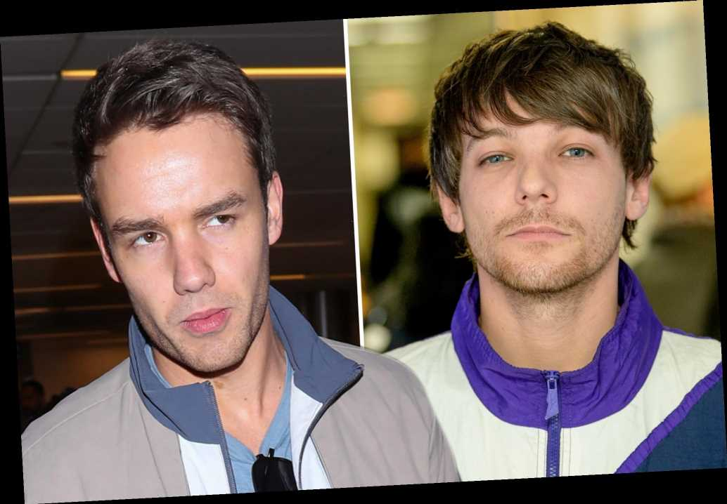 Louis Tomlinson told off Liam Payne for spilling One Direction reunion details