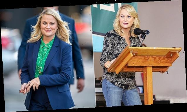 'Parks & Recreation' Then & Now: See Amy Poehler & The Cast's Transformations Since Their Time In Pawnee