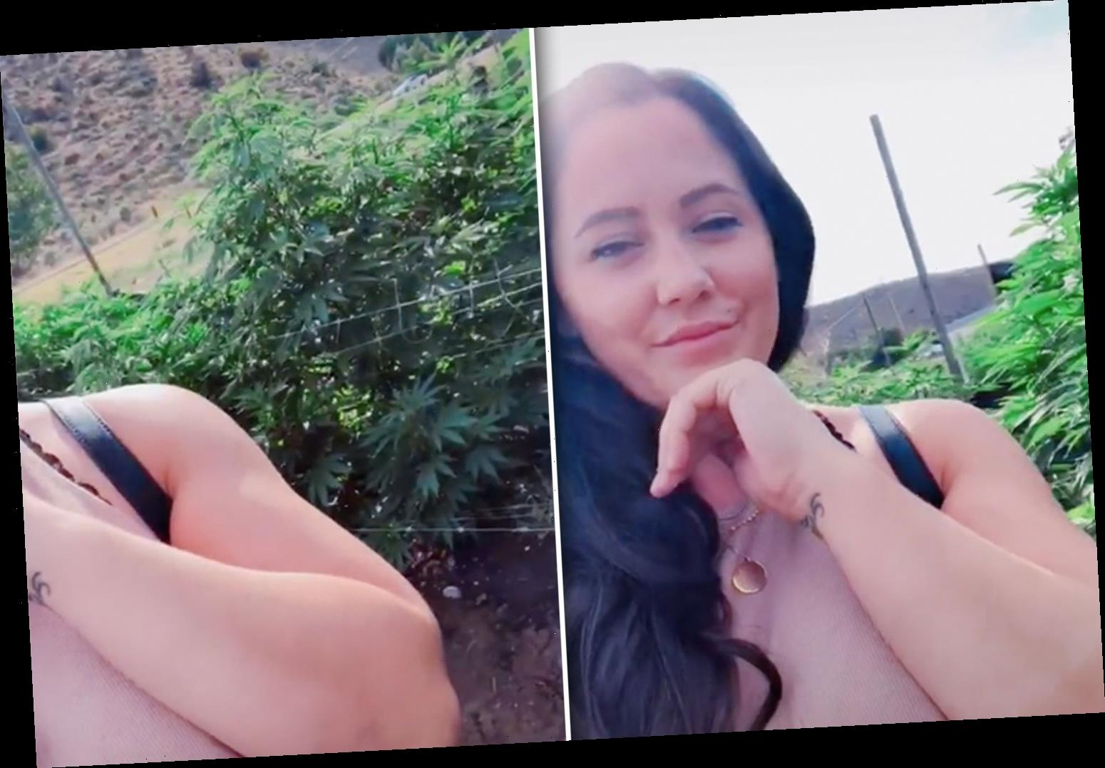 Teen Mom Jenelle Evans says she's 'obsessed' with weed in new TikTok video – The Sun