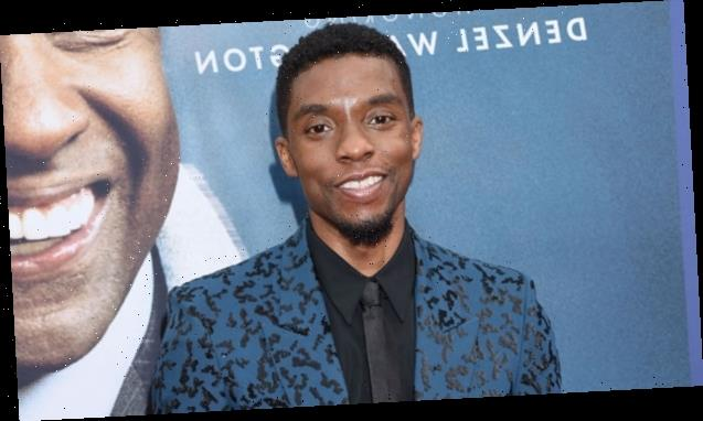 Chadwick Boseman May Have Hinted At Cancer Battle In 2017 Interview, Vowing To 'Live To Tell The Story'