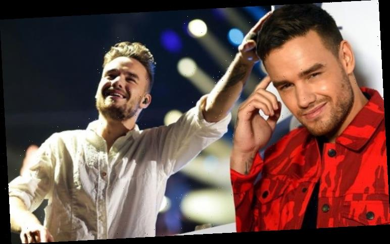 One Direction reunion: Liam Payne drops subtle news which COULD point to band's return