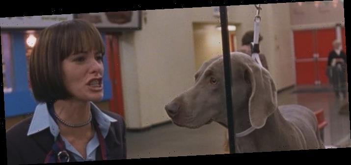 20 Years Ago, 'Best in Show' Provided the Kind of Comedy We Need Right Now