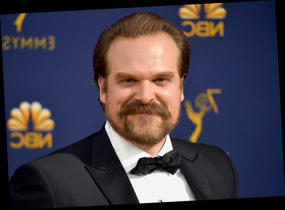 Who is Lily Allen's husband David Harbour? – The Sun