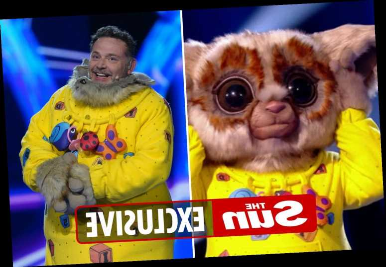 The Masked Singer's Bush Baby John Thomson reveals he used Countdown appearance as a 'subterfuge'