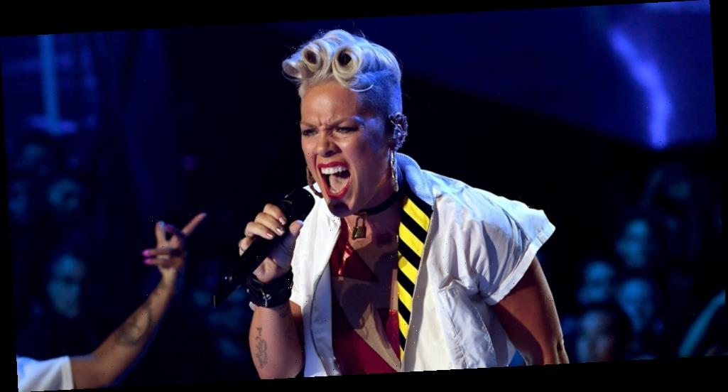 Pink Denounces Trump Supporters for Storming the Capitol: 'Hypocrites & Animals'