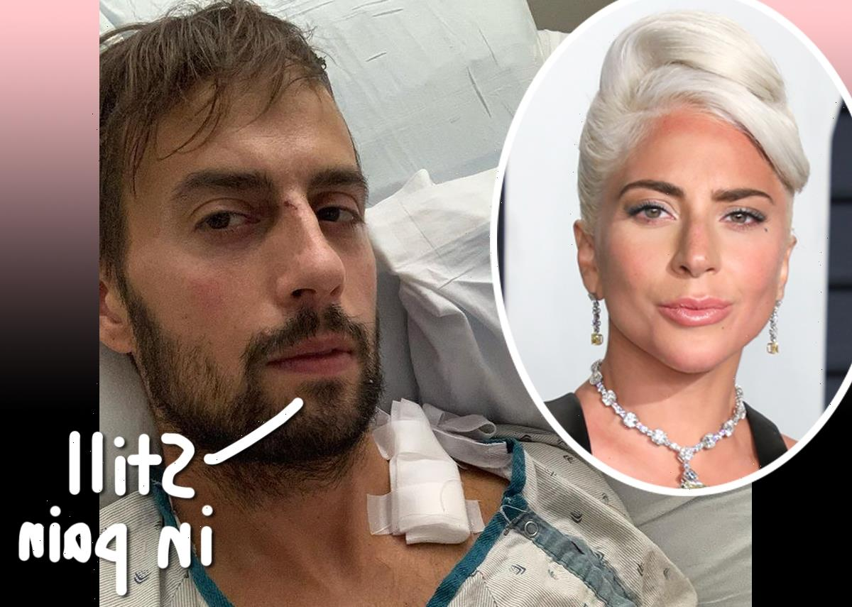 Lady GaGa's Dog Walker Says It Hasn't 'Been Easy' To Heal With New Viral Fame