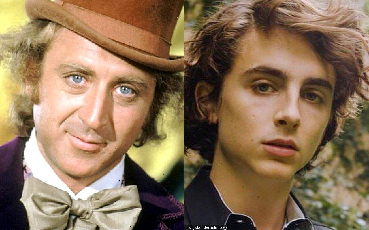 Timothee Chalamet Confirmed to Sing and Dance in New Willy Wonka Musical Film