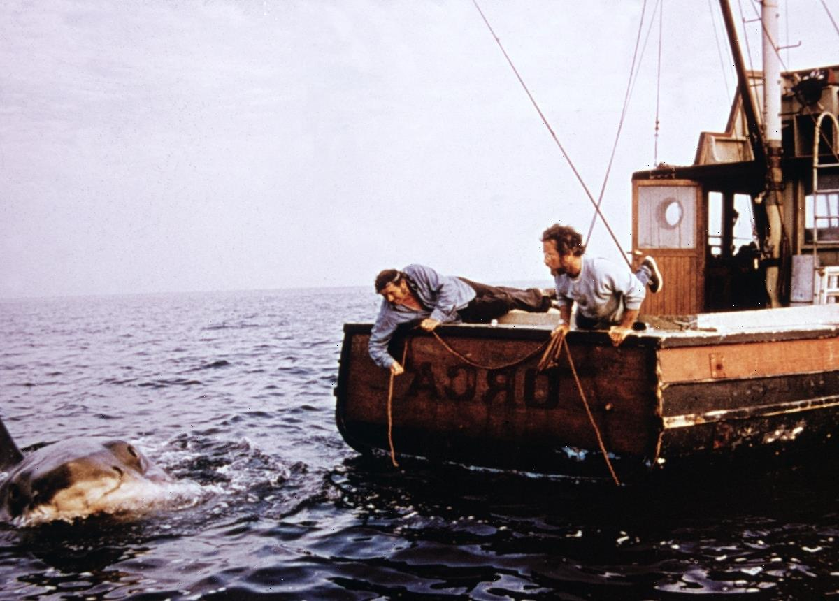 'Jaws': Steven Spielberg Said a Real Great White Shark Nearly Sank the Orca Boat