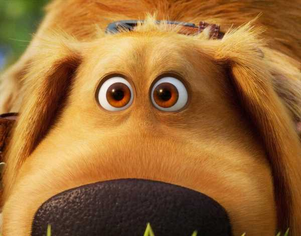 Disney Resurrects 'Up' With New 'Dug Days' Spinoff Series Debut in September