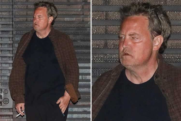 Matthew Perry looks unrecognizable as he smokes cigarette at dinner after split from fiancee Molly Hurwitz